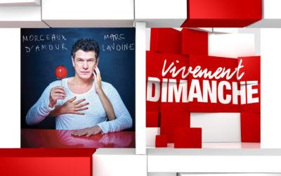 Chroniques Vivement Dimanche du 24/11/2019 Marc Lavoine